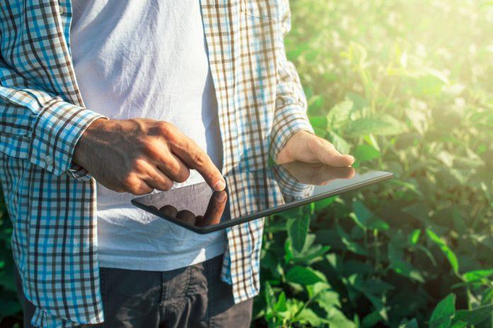 Bando Isi Agricoltura 2019/2020: beneficiari, requisiti e scadenze